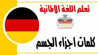 كلمات اجزاء الجسم في اللغة الالمانية