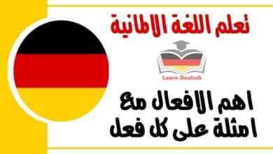 اهم الافعال في اللغة الالمانية مع امثلة على كل فعل