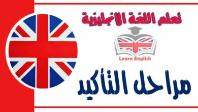 مراحل التأكيد في اللغة الانجليزية