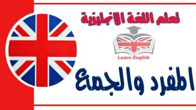 المفرد والجمع في اللغة الانجليزية