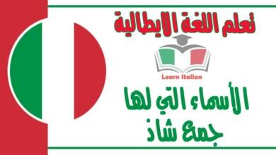 الأسماء التي لها جمع شاذ في اللغة الايطالية