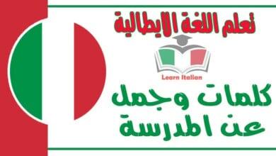 كلمات وجمل عن المدرسة في اللغة الايطالية