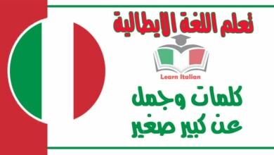 كلمات وجمل عن كبير صغير في اللغة الايطالية