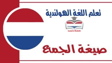 صيغة الجمع في اللغة الهولندية