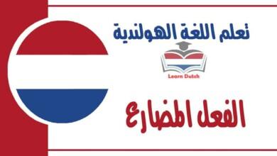 الفعل المضارع في اللغة الهولندية