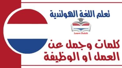 كلمات وجمل عن العمل او الوظيفة في اللغة الهولندية