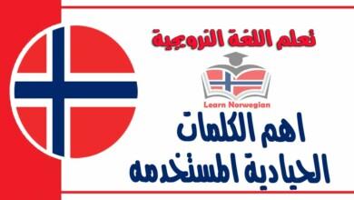 اهمالكلمات الحيادية المستخدمه في اللغة النرويجية
