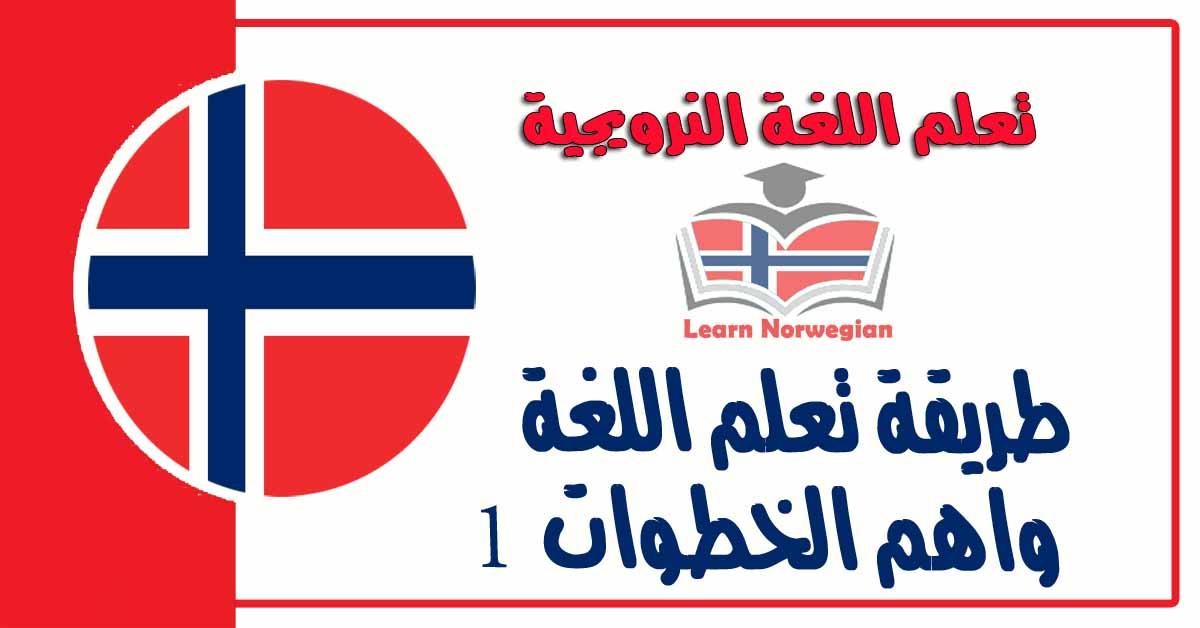 طريقة تعلم اللغة واهم الخطوات في تعلم اللغة النرويجية 1
