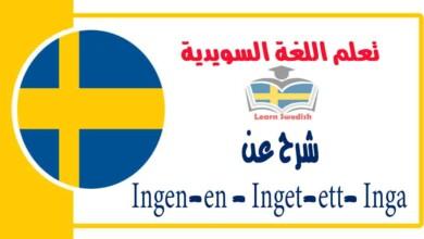 شرح عنIngen-en -Inget-ett-Inga في اللغة السويدية