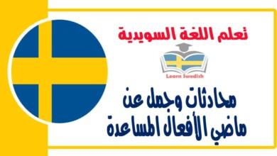 محادثات وجمل عن ماضي الأفعال المساعدة في اللغة السويدية