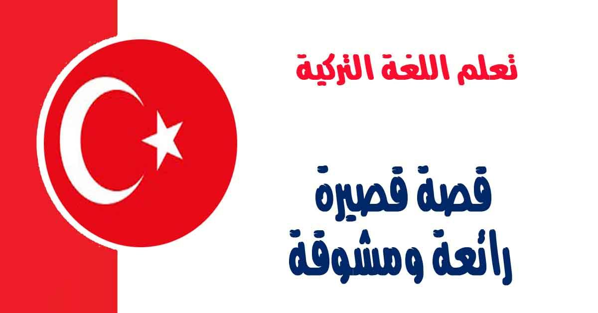 قصة قصيرة رائعة ومشوقة قصة الضيف الظريف مترجمة الى اللغة التركية